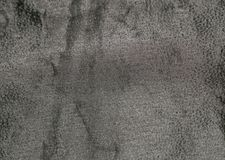 Schwarzes strukturiertes Blatt 1 Lizenzfreie Stockfotografie