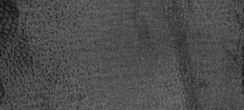 Schwarzes strukturiertes Blatt 2 Lizenzfreie Stockfotos