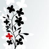 Schwarzes weißes Rot Lizenzfreie Stockfotos