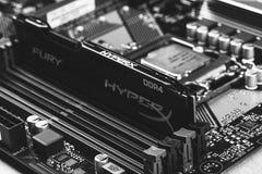 Schwarzes Wut-Gedächtnis RAM Module im Schlitz in der Motherboard Asus-Nahaufnahme, Schwarzweiss--photogr DDR 4 DIMM 16 GB Kingst lizenzfreies stockbild