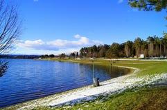Schwarzlsee near Graz, Austria. Schwarzlsee near Graz in january when come in white swans, green grass around lake, peoples walking and feeding swans, styria Royalty Free Stock Photos