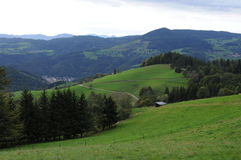 Schwarzwald. Foto from Schwarzwald in Germany during walk stock image