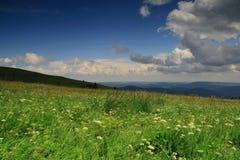 Schwarzwald Stockfotos