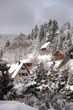 Schwarzwald bergby Arkivbild