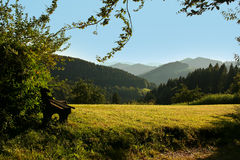 Schwarzwald / Black Forest. View over the hills and forest of Black Forest stock images