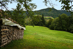 Schwarzwald / Black Forest Royalty Free Stock Photo