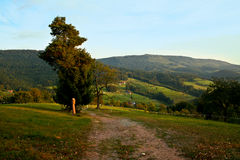 Schwarzwald / Black Forest. View over the hills and forest of Black Forest Royalty Free Stock Image