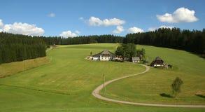 Schwarzwald/bosque negro Imagen de archivo libre de regalías