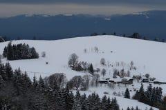 Schwarzwald im冬天 库存照片