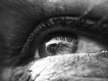 Schwarzweißaufnahme des Auges Lizenzfreies Stockfoto