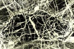 Schwarzweiss--, abstraktes Muster des Minerals in Polarisierungsmikro Stockbilder
