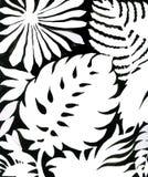 Schwarzweiss-Aquarell verlässt Muster Stockfoto