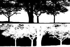 Schwarzweiss-Baumszenen-Schattenbildvektor Stockfotos