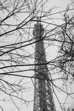 Schwarzweiss-Bild des Eiffelturms Lizenzfreie Stockfotos