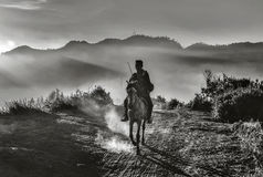 Schwarzweiss-Bild des Reiters ein Pferd am Abend reiten Lizenzfreies Stockbild