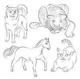 Schwarzweiss-Bild einer Katze, des Hundes, des Pferds und des Tigers Lizenzfreie Stockfotos