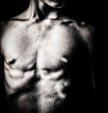 Schwarzweiss-Bild eines nackten männlichen Torsos Stockfotografie