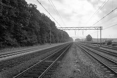 Schwarzweiss-Bild von Eisenbahnlinien nahe bei einem Wald stockbild