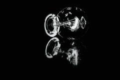 Schwarzweiss-Birne in der Dunkelheit mit Reflexion Lizenzfreies Stockfoto