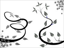 Schwarzweiss-Blumenauslegung Stockbild