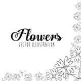 Schwarzweiss-Blumenauslegung Lizenzfreies Stockfoto
