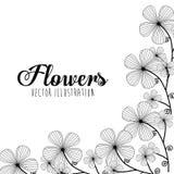 Schwarzweiss-Blumenauslegung Stockfoto