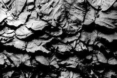 Schwarzweiss-Farbbeschaffenheitsmuster-Zusammenfassungshintergrund kann Gebrauch als Wandpapier-Bildschirmschonerbroschüren-Deckb Stockfoto