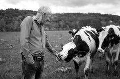Schwarzweiss-Foto des älteren Landwirts Proudly Looking an seinen Kühen in der Landschaft draußen lizenzfreies stockbild