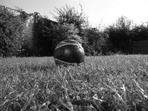 Schwarzweiss-Foto eines Fußballs in einem Garten Stockbild