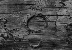 Schwarzweiss-Foto eines geknoteten Klotzes Lizenzfreie Stockfotografie