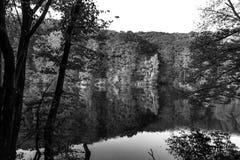 Schwarzweiss-Foto eines Waldes am Rand von einem See stockfotos