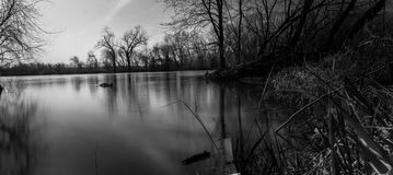 Schwarzweiss-Foto von ruhigem Fluss Lizenzfreie Stockfotos