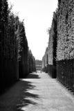 Schwarzweiss-Gärten von Versaille Stockfoto