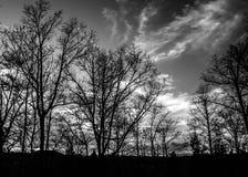 SCHWARZWEISS-GEBIRGSsonnenuntergang Stockbilder