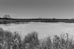 Schwarzweiss gefroren über Teich in New- Yorkmühlen, Minnesota Lizenzfreie Stockfotos