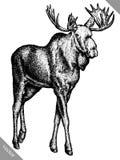 Schwarzweiss gravieren Sie lokalisierte Vektorillustration des Elchhandabgehobenen betrages Lizenzfreies Stockbild