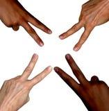 Schwarzweiss-Hände, die Friedenszeichen machen Stockfoto