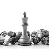 Schwarzweiss-König und Ritter des Schachs gründeten auf dunklem backgroun Lizenzfreies Stockfoto