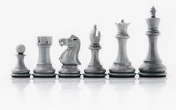 Schwarzweiss-König und Ritter des Schachs gründeten auf dunklem backgroun Lizenzfreie Stockfotos