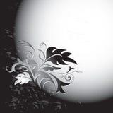 Schwarzweiss-Karte mit Blume Lizenzfreies Stockbild