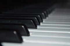 Schwarzweiss-Klavierschlüssel lizenzfreies stockbild