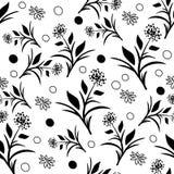 Schwarzweiss-Löwenzahn-Muster Stockfoto