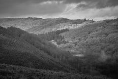 Schwarzweiss-Landschaft Dartmoor Stockbilder