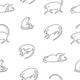 Schwarzweiss-Muster der netten kleinen Affen Stockfotografie