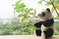 Schwarzweiss-Pandapuppe stockbilder