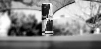 Schwarzweiss--Red Bull Lizenzfreies Stockfoto