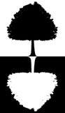 Schwarzweiss-Schattenbild eines Baums lokalisiert auf weiß-schwarzem Hintergrund Stockfoto