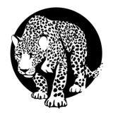 Schwarzweiss-Schattenbild eines Leoparden in einem schwarzen Kreis Stockfotos