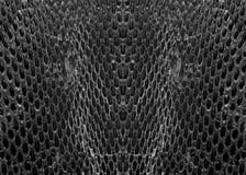 Schwarzweiss-Schlangenhaut Lizenzfreies Stockbild