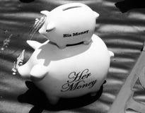 Schwarzweiss-Schwein bank's stockfoto